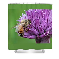 Yummm Chive Nectar Shower Curtain by Lucinda VanVleck