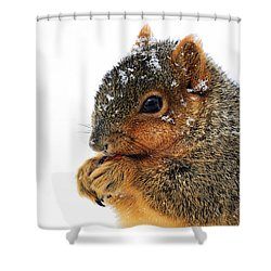 Yummy Shower Curtain by Marcia Colelli