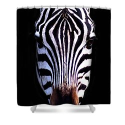 ZEB Shower Curtain