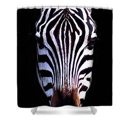 ZEB Shower Curtain by Skip Willits