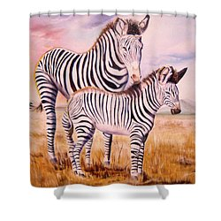 Zebra And Foal Shower Curtain