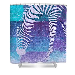 Zebra Art - Bp02t01 Shower Curtain by Variance Collections