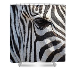 Zebra Eye Abstract Shower Curtain by Maria Urso