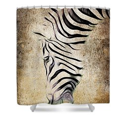 Zebra Fade Shower Curtain