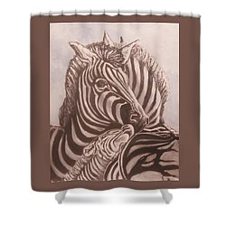 Zebra Family Shower Curtain