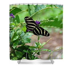 Zebra Longwing Butterfly Floral Shower Curtain