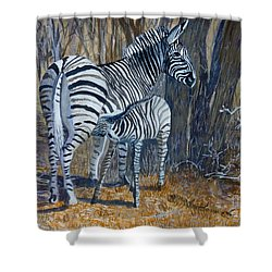 Zebra Mother And Foal Shower Curtain by Caroline Street