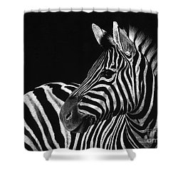 Zebra No. 3 Shower Curtain