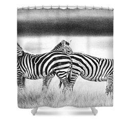 Zebra Panarama Shower Curtain