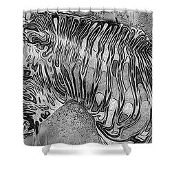 Zebra - Rainy Day Series Shower Curtain by Jack Zulli