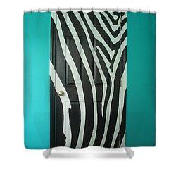 Zebra Stripe Mural - Door Number 1 Shower Curtain by Sean Connolly