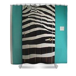 Zebra Stripe Mural - Door Number 2 Shower Curtain by Sean Connolly