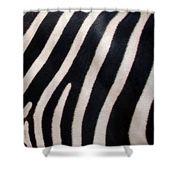 Zebra Stripes Shower Curtain by Ramona Johnston