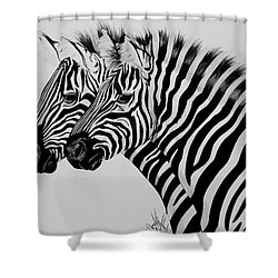 Zebra Twins Shower Curtain