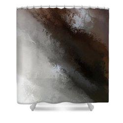 Z Iv Shower Curtain
