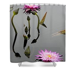 Zen Lilies Shower Curtain