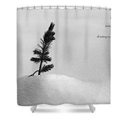 Shower Curtain featuring the photograph Zen Wisdom Stillness by Peter v Quenter