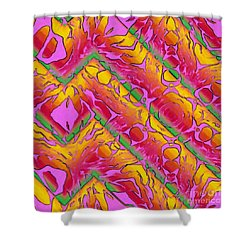 Zig Zag Paint Shower Curtain by Dee Flouton