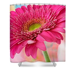 Gerbera Daisy Abstract Shower Curtain