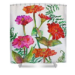 Zinnia And Ferns Shower Curtain by Janet Immordino