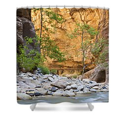 Shower Curtain featuring the photograph Zion Narrows by Bryan Keil