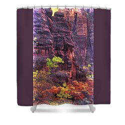 Zion National Park - Waning Colors In The Canyon Near Days End - Autumn Shower Curtain by Michael Mazaika