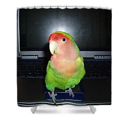 Shower Curtain featuring the photograph Zippy The Lovebird by Joan Reese