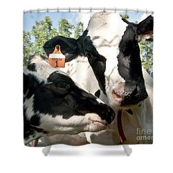 Zoey And Matilda Shower Curtain