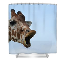 Zootography Giraffe Honking Shower Curtain by Jeff at JSJ Photography
