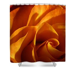 Zowie Rose Shower Curtain