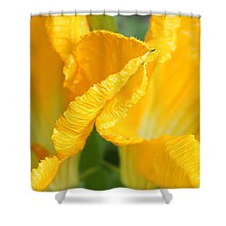 Zucchini Flowers In May Shower Curtain