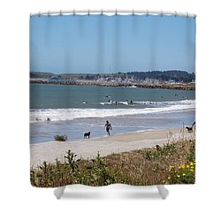 California Beach Shower Curtain by Carolyn Donnell