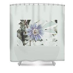 Passion Flower On White Shower Curtain by Tom Wurl