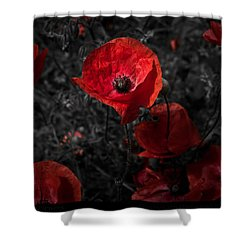 Shower Curtain featuring the photograph  Poppy Red by Beverly Cash