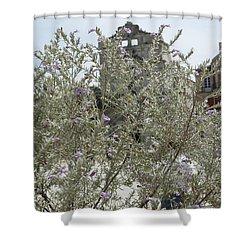 Santa Lucia Alla Badia Church Shower Curtain