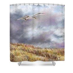 Seagull Flying Over Dunes Shower Curtain by Jack Skinner