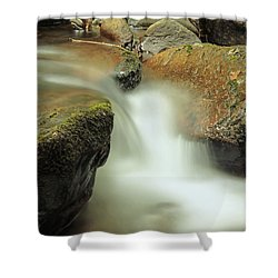 Torc Flow Shower Curtain by Martina Fagan