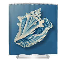 X-ray Of A Conch Shell Shower Curtain