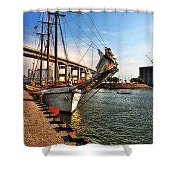 026 Empire Sandy Series  Shower Curtain by Michael Frank Jr