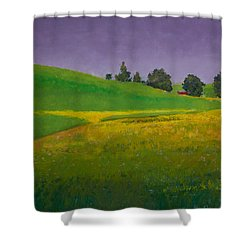 A Sliver Of Canola Shower Curtain by David Patterson