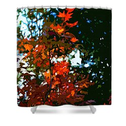 Abstract 281 Shower Curtain by Pamela Cooper