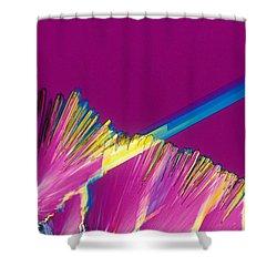 Adenosine Triphosphate Shower Curtain by Michael W. Davidson