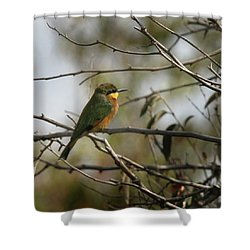 African Bee Eater Shower Curtain
