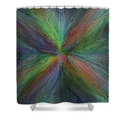 After The Rain 3 Shower Curtain by Tim Allen