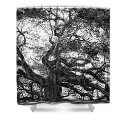 Shower Curtain featuring the photograph Angel Oak by Lynne Jenkins