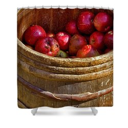 Apple Harvest Shower Curtain by Joann Vitali