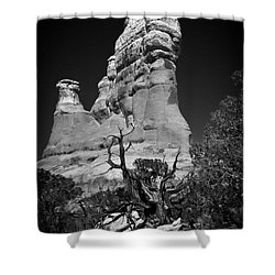 Arches National Park Bw Shower Curtain