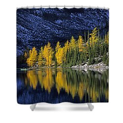 Autumn, Alpine Larch Trees, Lake Agnes Shower Curtain by John Sylvester