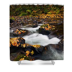 Autumn Passing Shower Curtain by Mike  Dawson