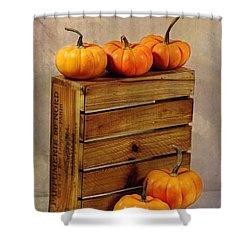 Autumn Still Life Shower Curtain by Judi Bagwell